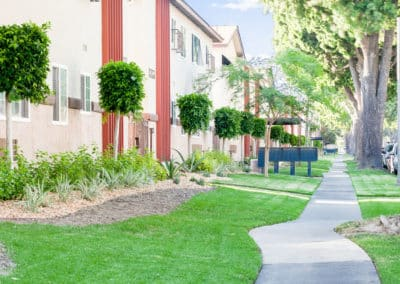 Lush grass and new landscaping