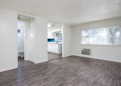Wood-like flooring throughout the apartment