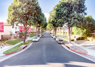 Tree lined street in between the Lakewood Manor Apartment Buildings