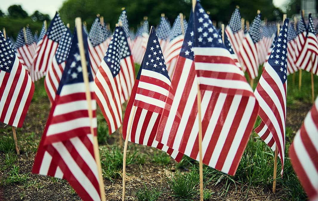 American Flags planted on the soil
