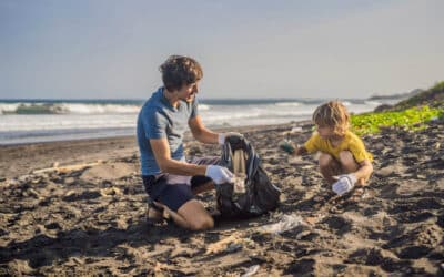 How You Can Take Care of Our Beaches and Parks